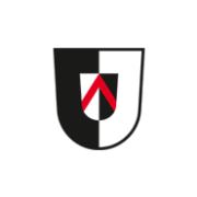 Janzen & Co. Logo